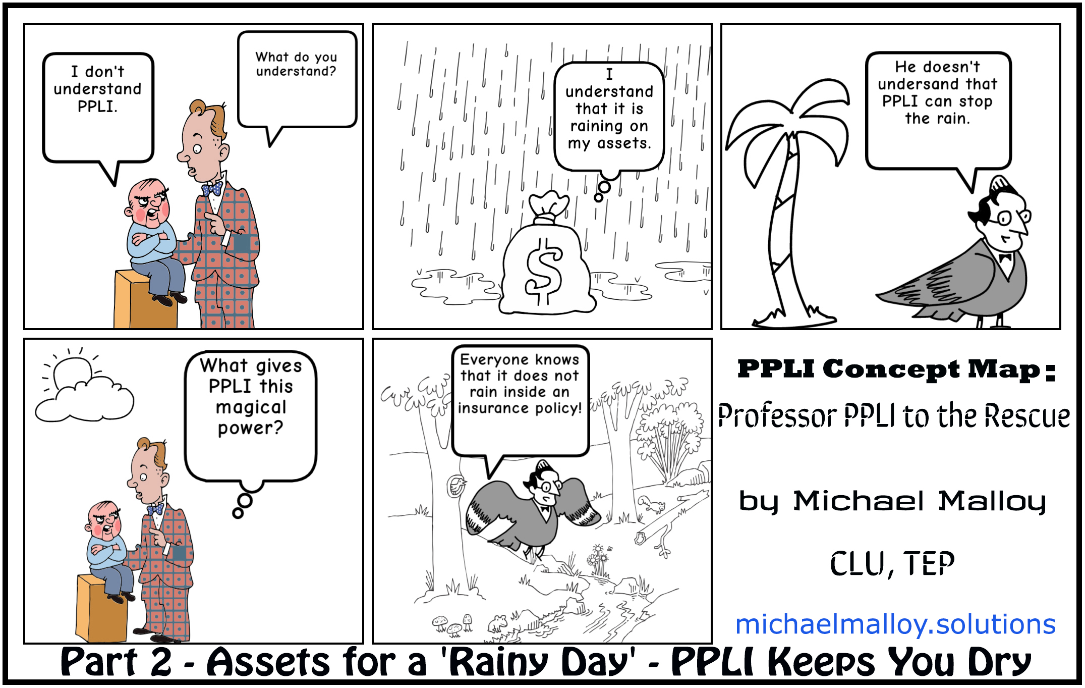 Part 2 - Assets for a 'Rainy Day' - PPLI Keeps You Dry