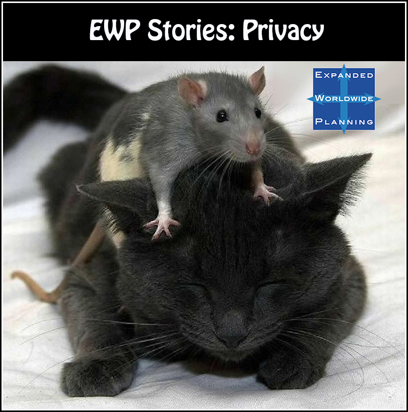 EWP Stories-1-Privacy